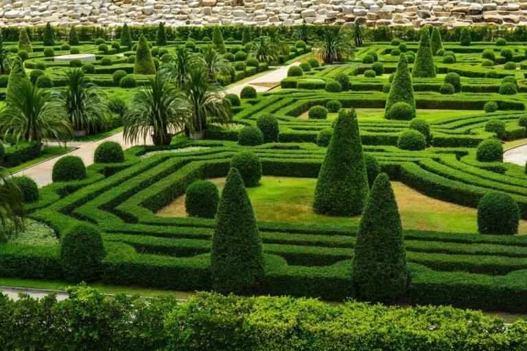Zadbany ogród to przyjemność dla zmysłów